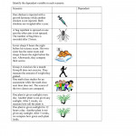 Identifying Dependent Variables Interactive Worksheet