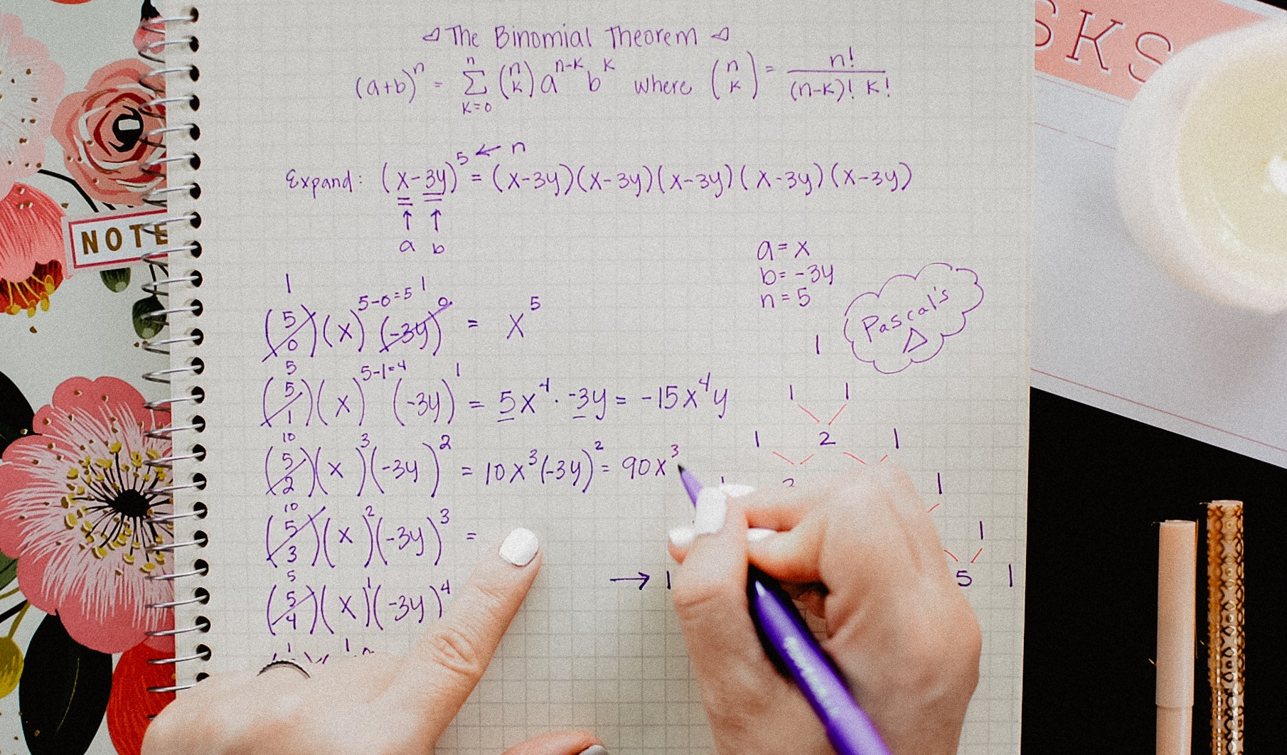 The Binomial Theorem Explained. With A Special Splash Of